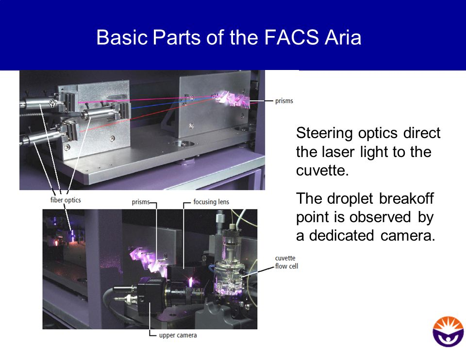 Basic Parts of the FACS Aria Steering optics direct the laser light to the cuvette. The droplet breakoff point is observed by a dedicated camera.