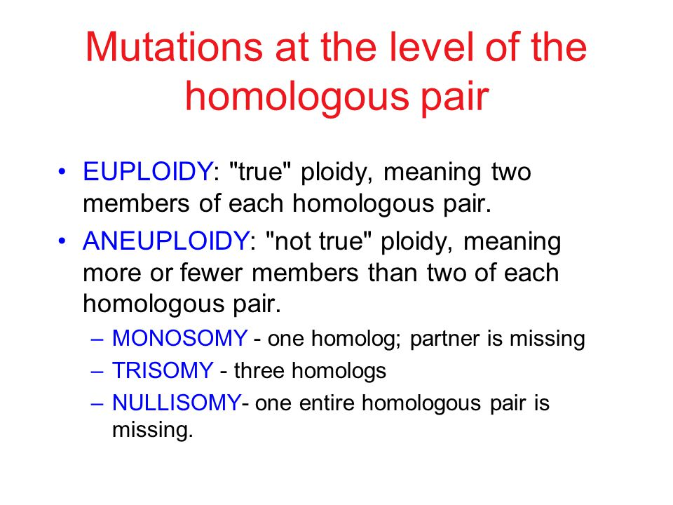 Mutations at the level of the homologous pair EUPLOIDY: