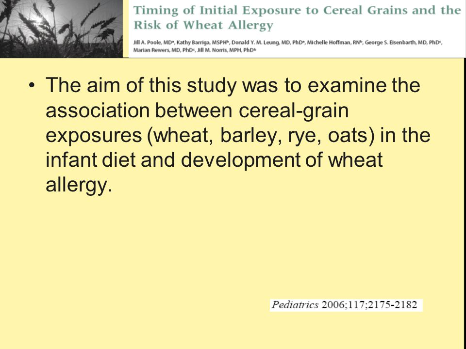 The aim of this study was to examine the association between cereal-grain exposures (wheat, barley, rye, oats) in the infant diet and development of wheat allergy.