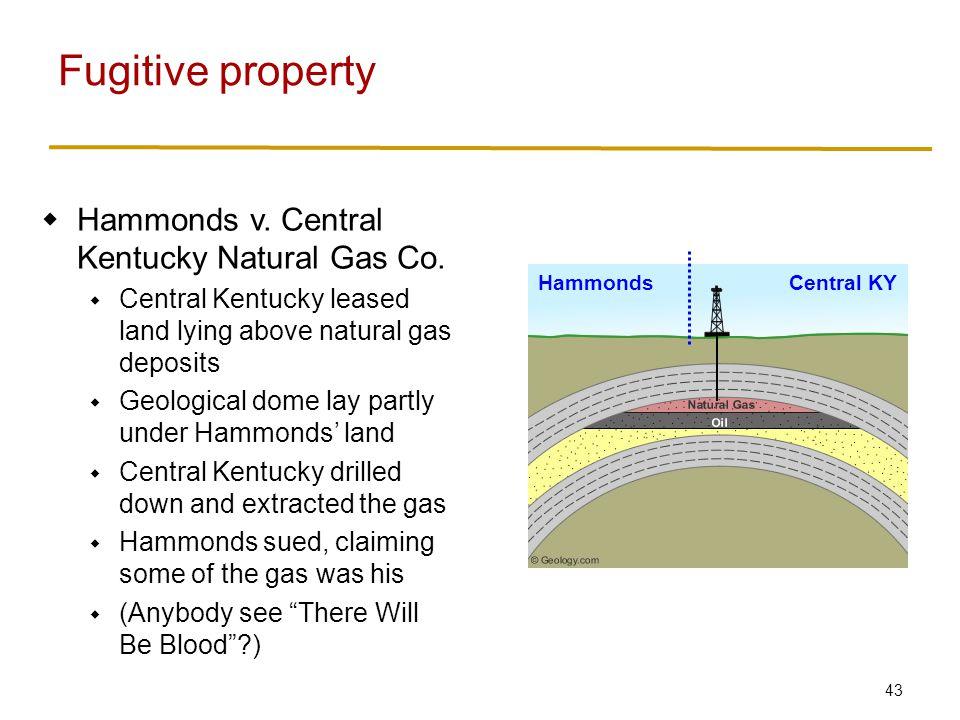 43  Hammonds v. Central Kentucky Natural Gas Co.