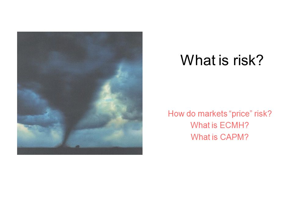 "What is risk? How do markets ""price"" risk? What is ECMH? What is CAPM?"