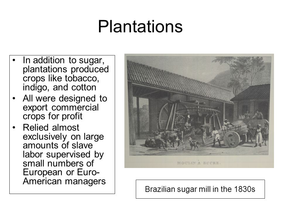 Plantations In addition to sugar, plantations produced crops like tobacco, indigo, and cotton All were designed to export commercial crops for profit Relied almost exclusively on large amounts of slave labor supervised by small numbers of European or Euro- American managers Brazilian sugar mill in the 1830s