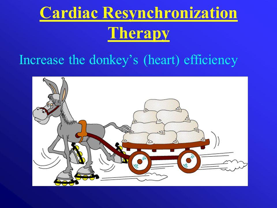 Cardiac Resynchronization Therapy Increase the donkey's (heart) efficiency