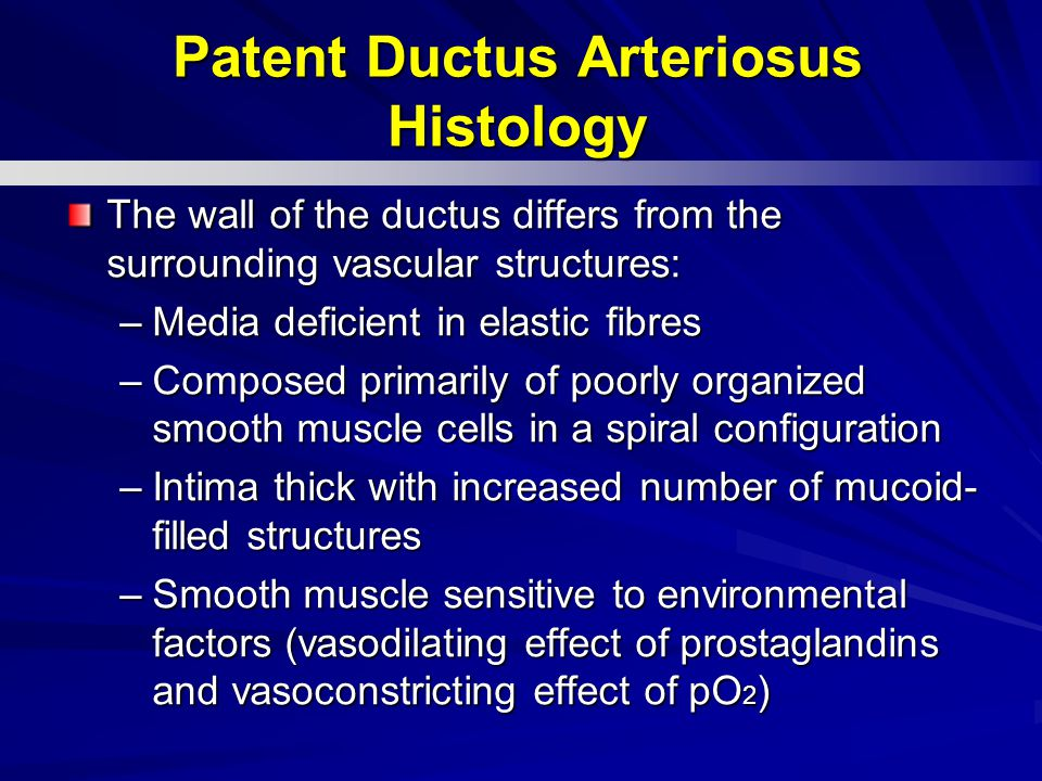 The wall of the ductus differs from the surrounding vascular structures: –Media deficient in elastic fibres –Composed primarily of poorly organized smooth muscle cells in a spiral configuration –Intima thick with increased number of mucoid- filled structures –Smooth muscle sensitive to environmental factors (vasodilating effect of prostaglandins and vasoconstricting effect of pO 2 ) Patent Ductus Arteriosus Histology