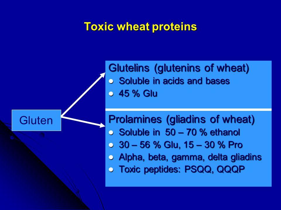 Laboratory tests Protein: Albumin, globulins, Liver tests Protein: Albumin, globulins, Liver tests Carbs : glucose, Lactose-H breath test, (D-Xylose) Carbs : glucose, Lactose-H breath test, (D-Xylose) Fats : (stool for fat), lipid profile, carotene Fats : (stool for fat), lipid profile, carotene Minerals : Ca, Mg, P, Fe, ferritin,zinc Minerals : Ca, Mg, P, Fe, ferritin,zinc Vitamins : RBC folate, B12, Vit A, 25-OH Vitamin D, PT Vitamins : RBC folate, B12, Vit A, 25-OH Vitamin D, PT