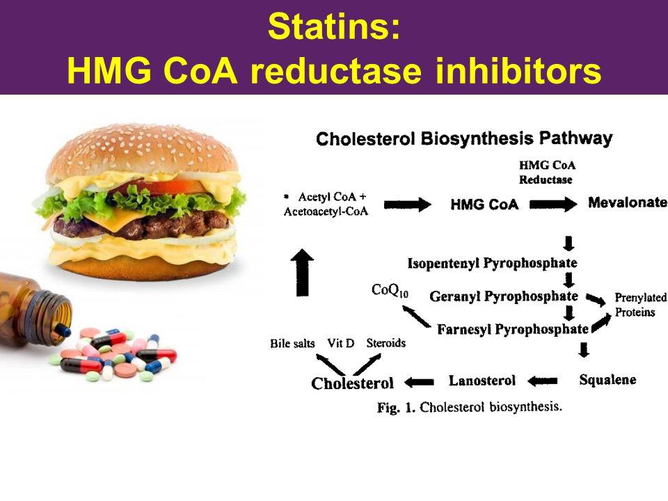 Statins: HMG CoA reductase inhibitors
