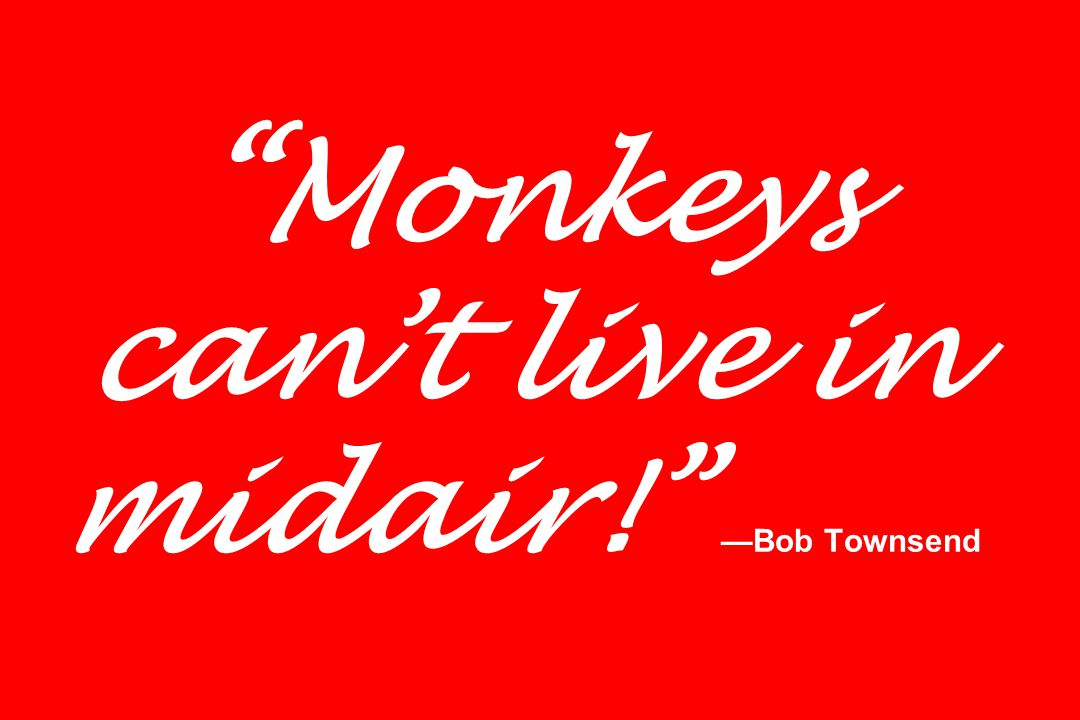 Monkeys can't live in midair! —Bob Townsend