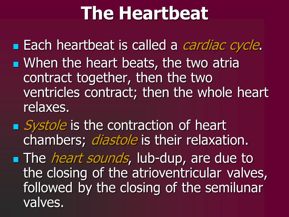 The Heartbeat Each heartbeat is called a cardiac cycle. Each heartbeat is called a cardiac cycle. When the heart beats, the two atria contract togethe