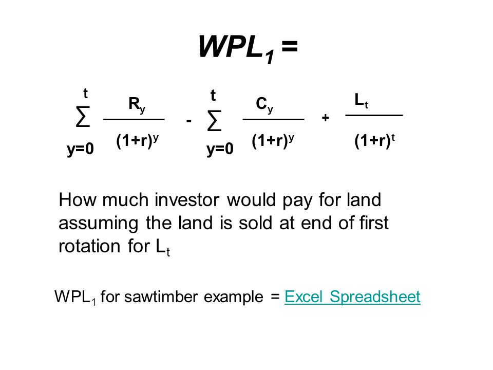WPL 1 = ∑ y=0 t RyRy (1+r) y - ∑ t y=0 CyCy (1+r) y + LtLt (1+r) t How much investor would pay for land assuming the land is sold at end of first rotation for L t WPL 1 for sawtimber example = Excel SpreadsheetExcel Spreadsheet