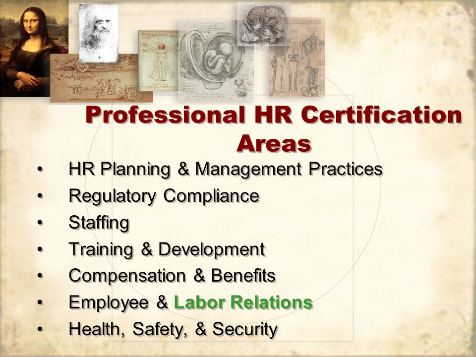 Professional HR Certification Areas HR Planning & Management Practices Regulatory Compliance Staffing Training & Development Compensation & Benefits Employee & Labor Relations Health, Safety, & Security HR Planning & Management Practices Regulatory Compliance Staffing Training & Development Compensation & Benefits Employee & Labor Relations Health, Safety, & Security