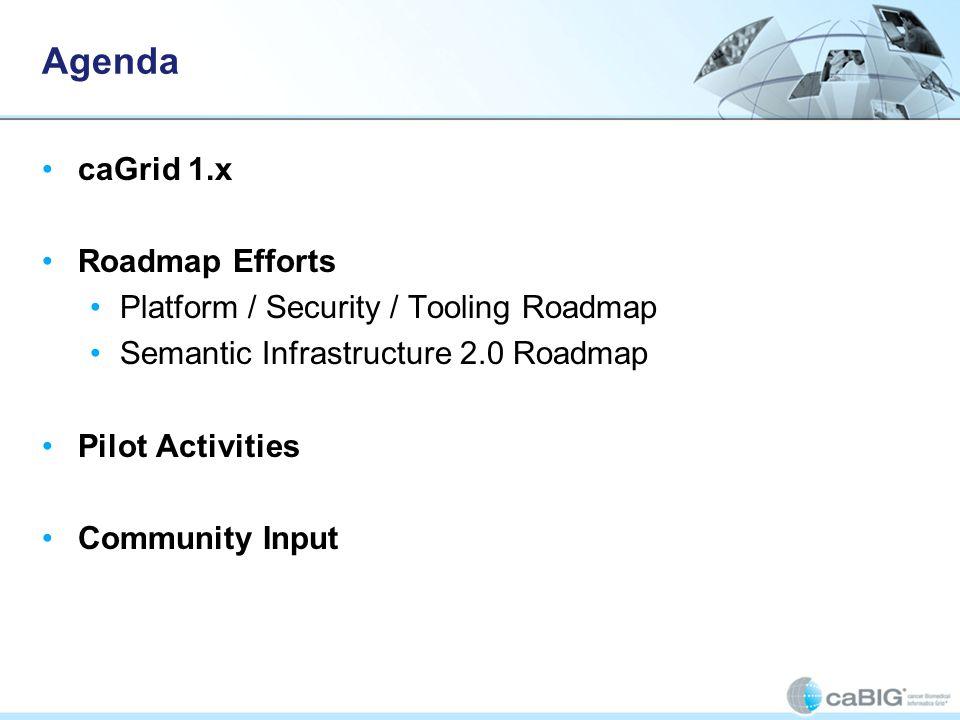 Agenda caGrid 1.x Roadmap Efforts Platform / Security / Tooling Roadmap Semantic Infrastructure 2.0 Roadmap Pilot Activities Community Input
