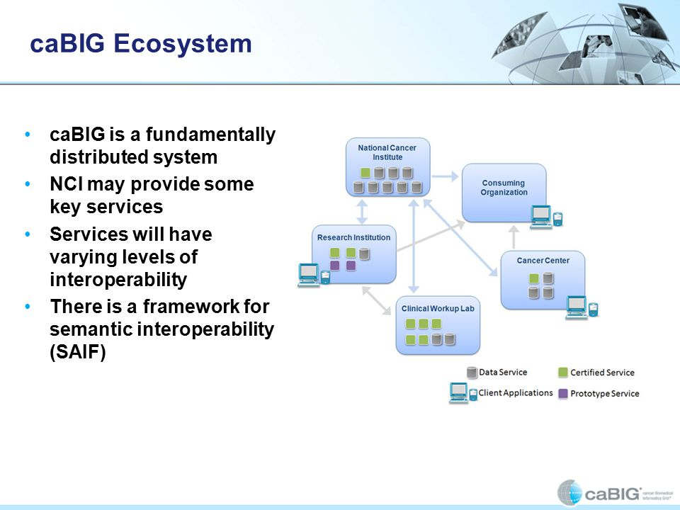 caBIG Ecosystem caBIG is a fundamentally distributed system NCI may provide some key services Services will have varying levels of interoperability There is a framework for semantic interoperability (SAIF)