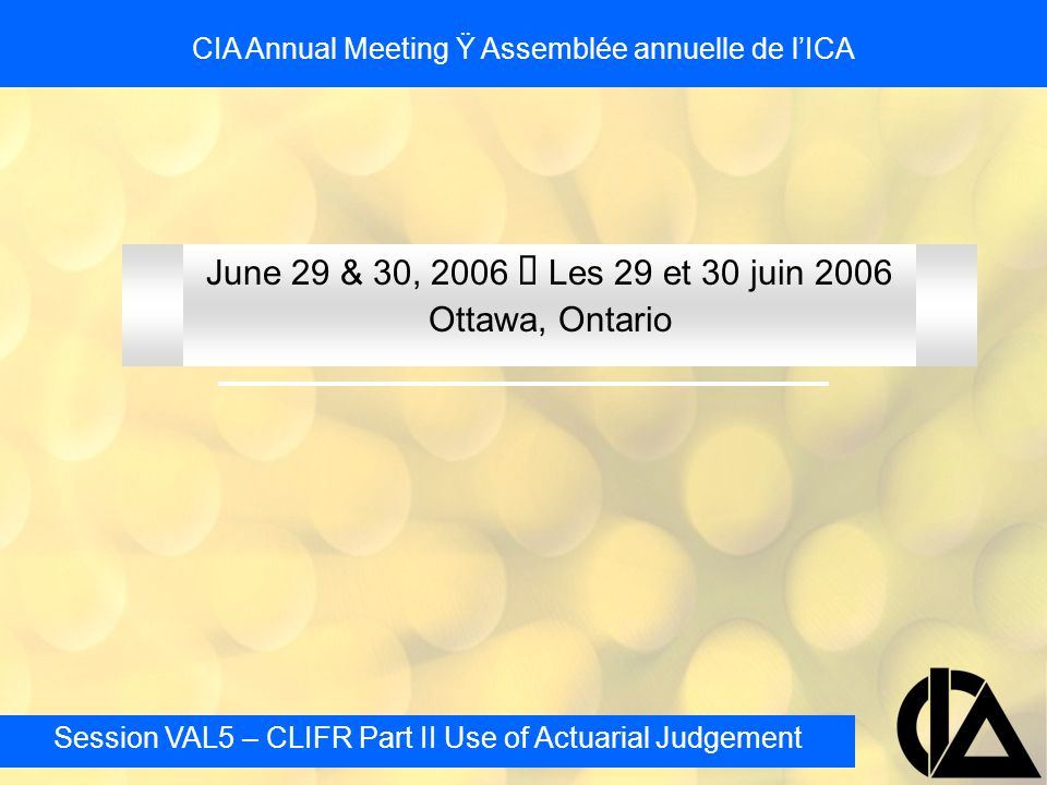 Session VAL5 – CLIFR Part II Use of Actuarial Judgement CIA Annual Meeting Ÿ Assemblée annuelle de l'ICA Investment Return Assumptions - Examples Following year (T + 2) market return is a loss of 20% –For Company A revised historical average (52 year now) is 8.94% –Company B continues to use 8.5% –Company C's method results in an assumption of 31.5% in year 1, 8.5% thereafter –Company D's method results in an assumption of 9.34% for 25 years 8.5% thereafter