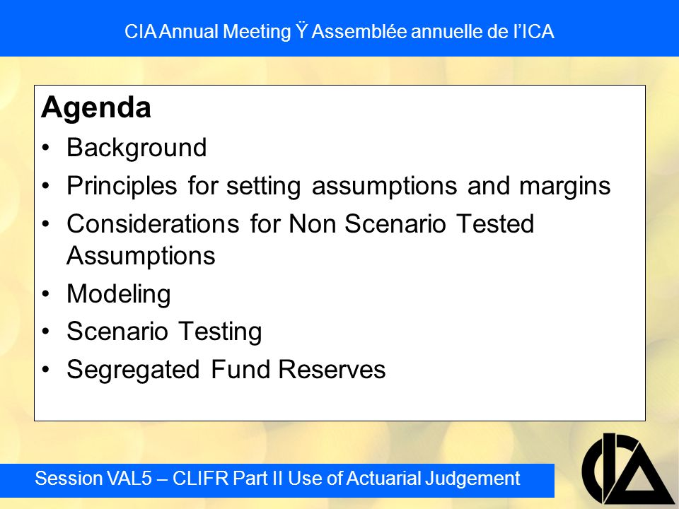 Session VAL5 – CLIFR Part II Use of Actuarial Judgement CIA Annual Meeting Ÿ Assemblée annuelle de l'ICA Investment Return Assumptions - Examples Upon review the Appointed Actuaries of Companies C and D noticed their initial returns exceeded the long term historical average Adjusted their process to ensure the projected values were not larger –Company C's revised method resulted in a revised assumption of 8.94% for approximately 49 years, 8.5% thereafter –Company D's revised method also results in 8.94% for approximately 49 years, 8.5% thereafter