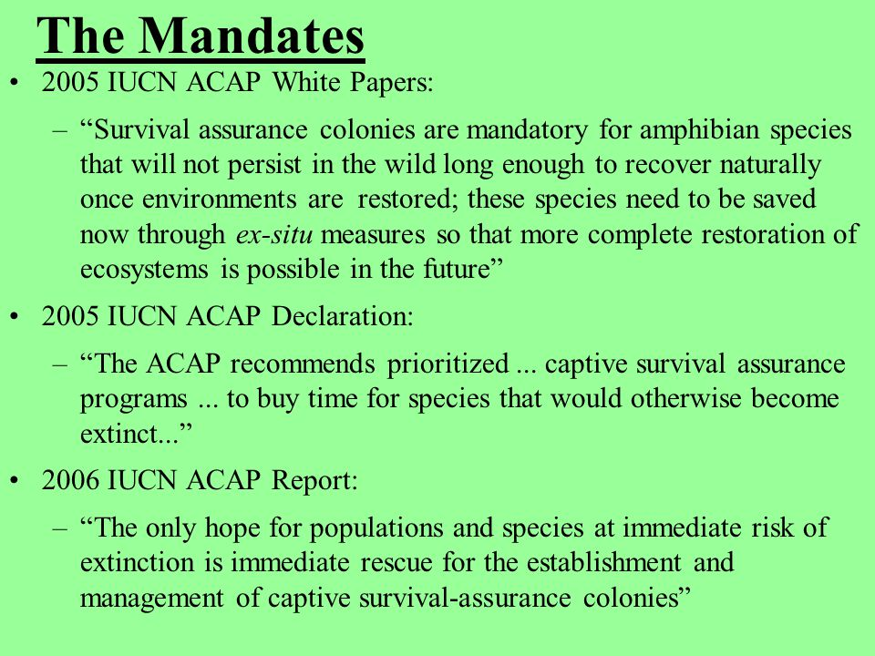 """The Mandates 2005 IUCN ACAP White Papers: –""""Survival assurance colonies are mandatory for amphibian species that will not persist in the wild long eno"""