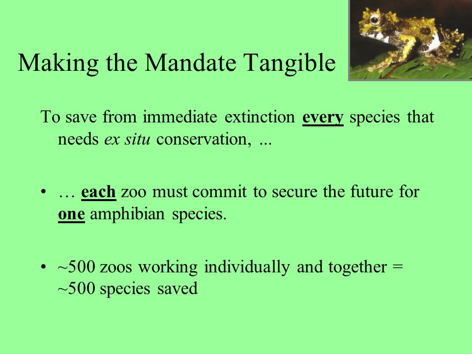 Making the Mandate Tangible To save from immediate extinction every species that needs ex situ conservation,... … each zoo must commit to secure the f