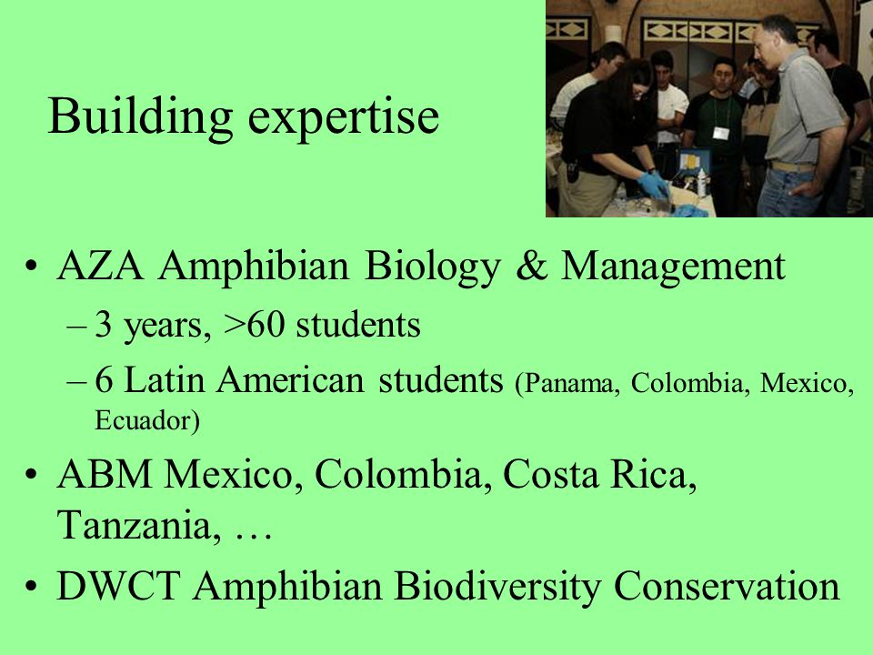Building expertise AZA Amphibian Biology & Management –3 years, >60 students –6 Latin American students (Panama, Colombia, Mexico, Ecuador) ABM Mexico, Colombia, Costa Rica, Tanzania, … DWCT Amphibian Biodiversity Conservation