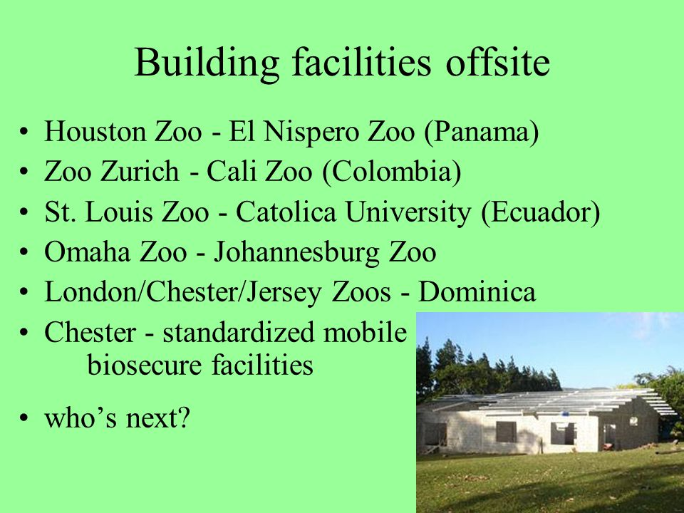 Building facilities offsite Houston Zoo - El Nispero Zoo (Panama) Zoo Zurich - Cali Zoo (Colombia) St.