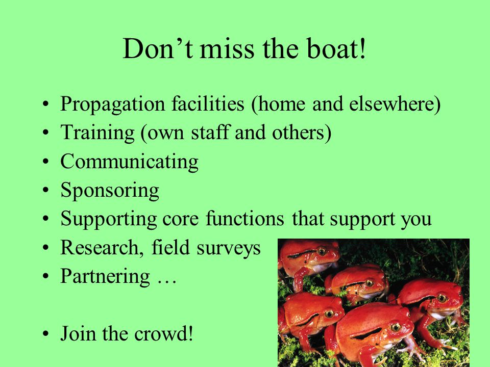 Don't miss the boat! Propagation facilities (home and elsewhere) Training (own staff and others) Communicating Sponsoring Supporting core functions th