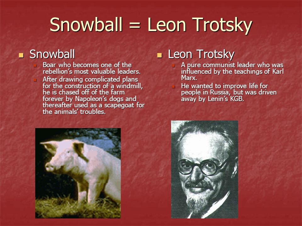 Snowball = Leon Trotsky Snowball Snowball Boar who becomes one of the rebellion's most valuable leaders. Boar who becomes one of the rebellion's most
