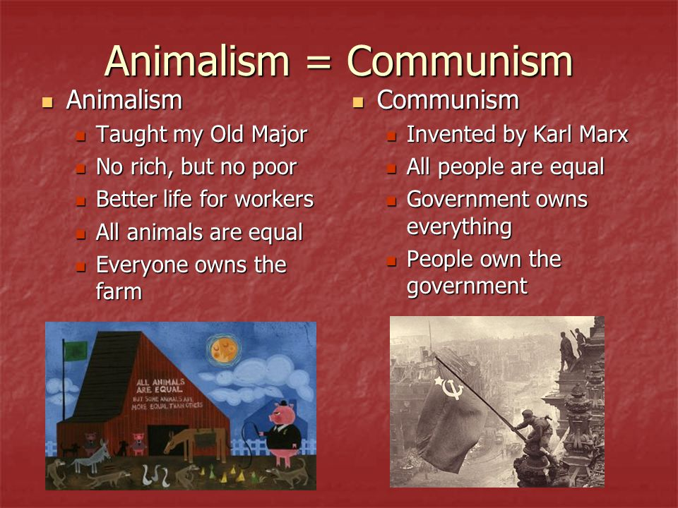 Animalism = Communism Animalism Animalism Taught my Old Major Taught my Old Major No rich, but no poor No rich, but no poor Better life for workers Be