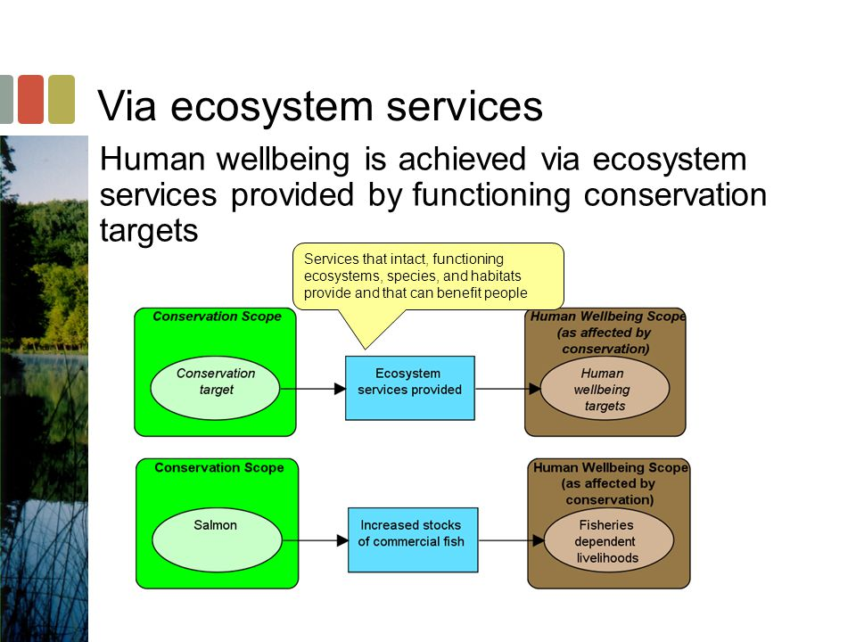 Human wellbeing is achieved via ecosystem services provided by functioning conservation targets Services that intact, functioning ecosystems, species, and habitats provide and that can benefit people Via ecosystem services