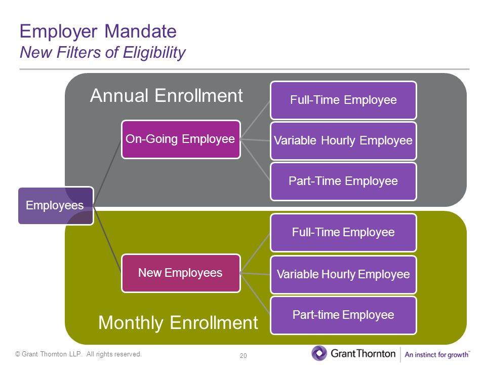 © Grant Thornton LLP. All rights reserved. Employees On-Going Employee Full-Time EmployeeVariable Hourly EmployeePart-Time Employee New Employees Full