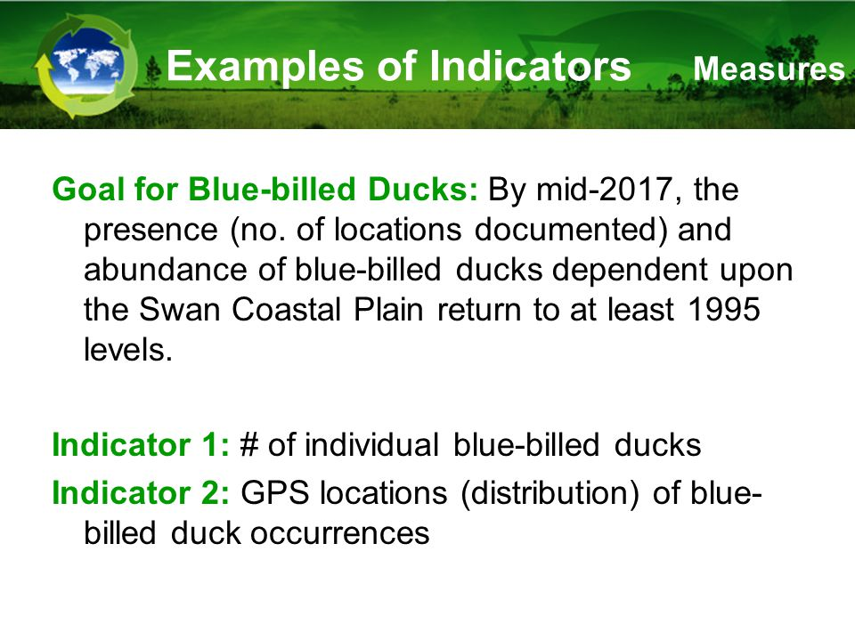 Examples of Indicators Goal for Blue-billed Ducks: By mid-2017, the presence (no.