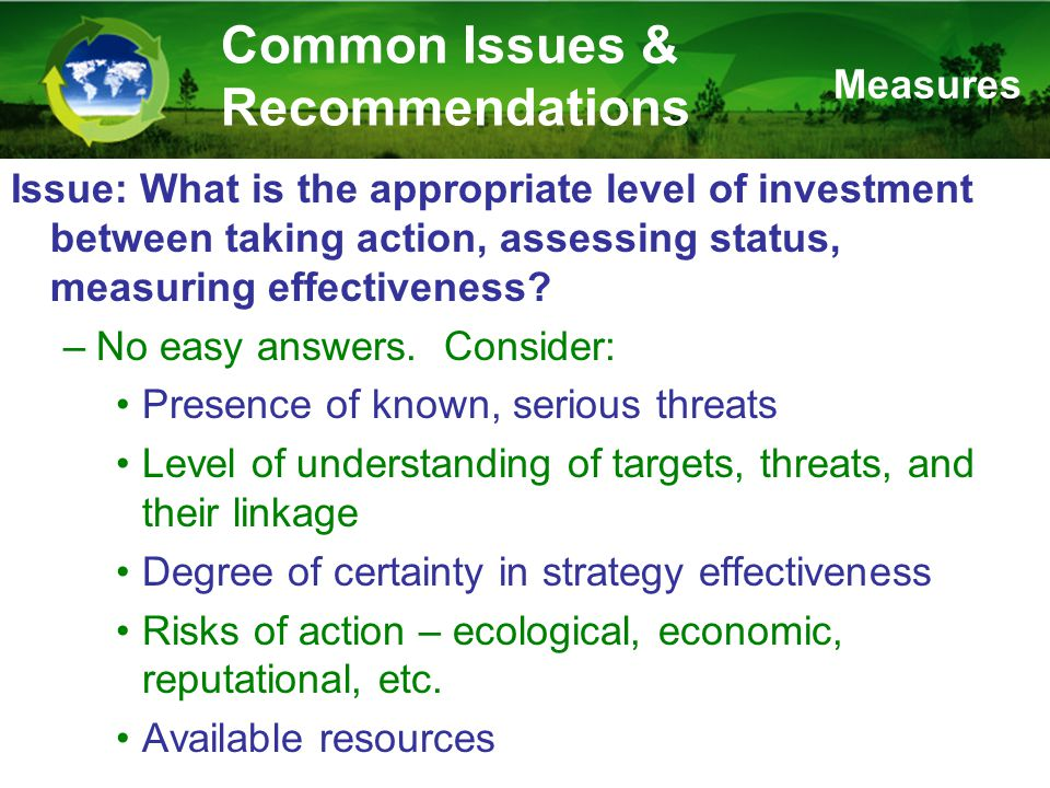 Issue: What is the appropriate level of investment between taking action, assessing status, measuring effectiveness.
