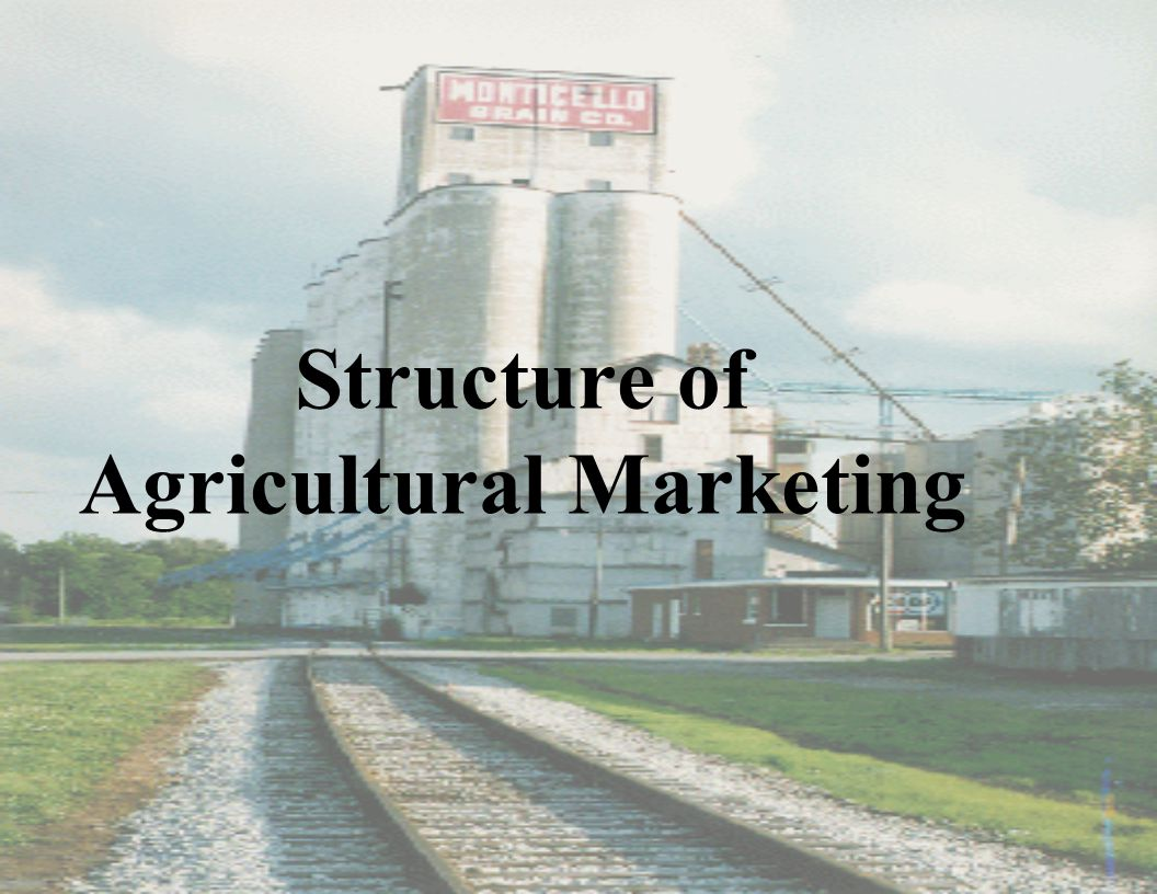 Structure of Agricultural Marketing