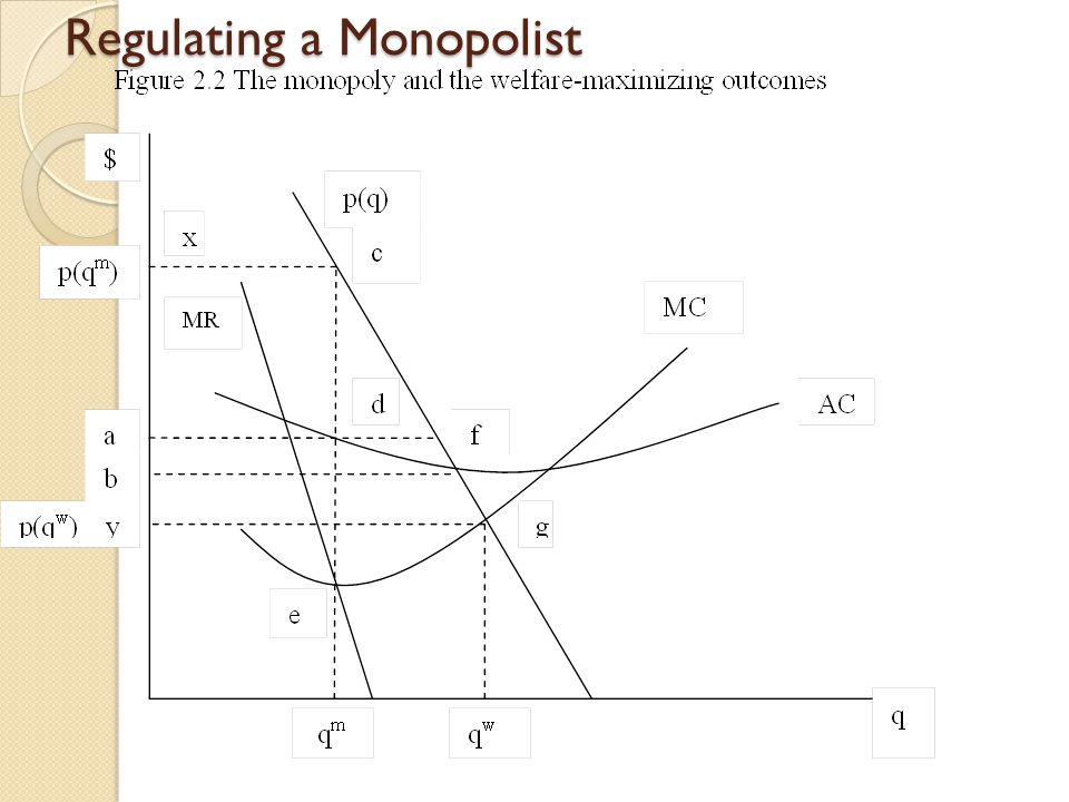 Regulating a Monopolist