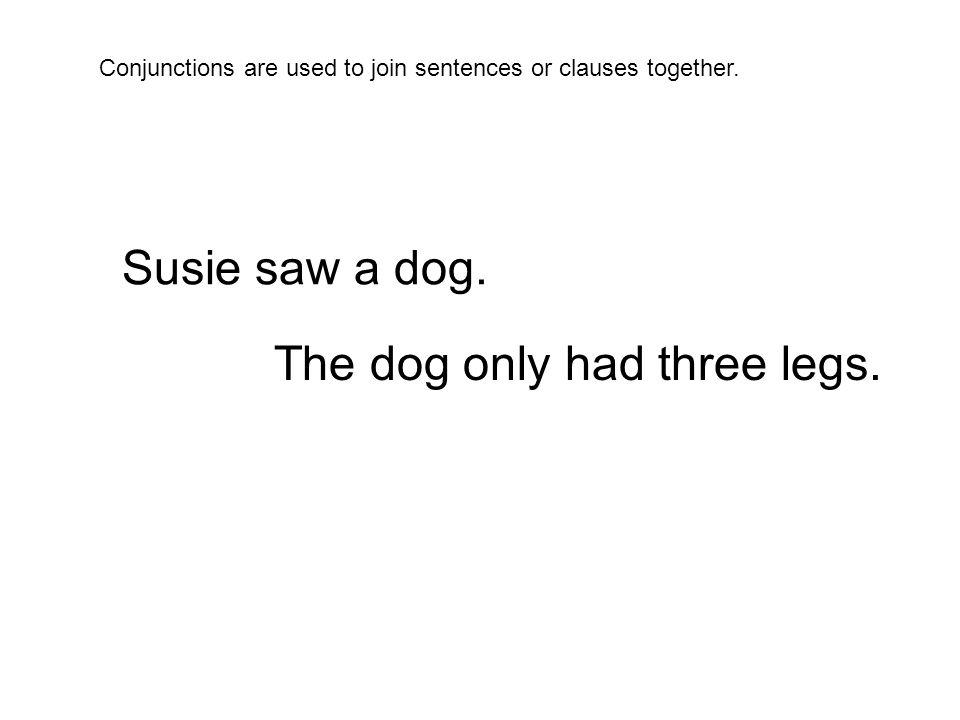 Sarah ran away from the dog.The dog barked at Sarah.