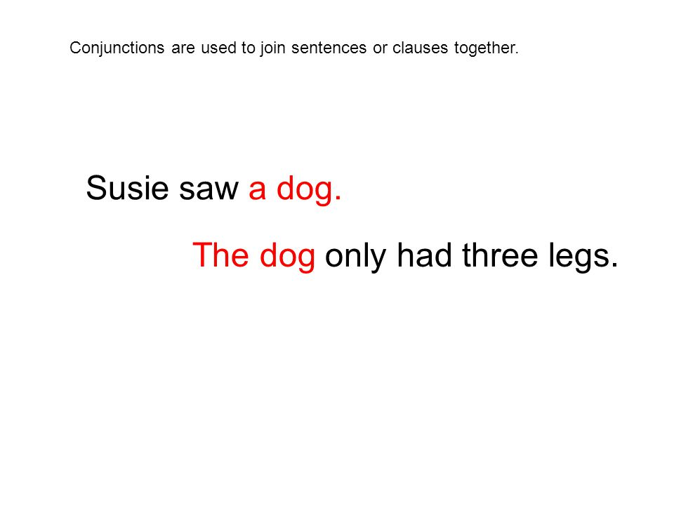 Susie saw a dog.The dog only had three legs.