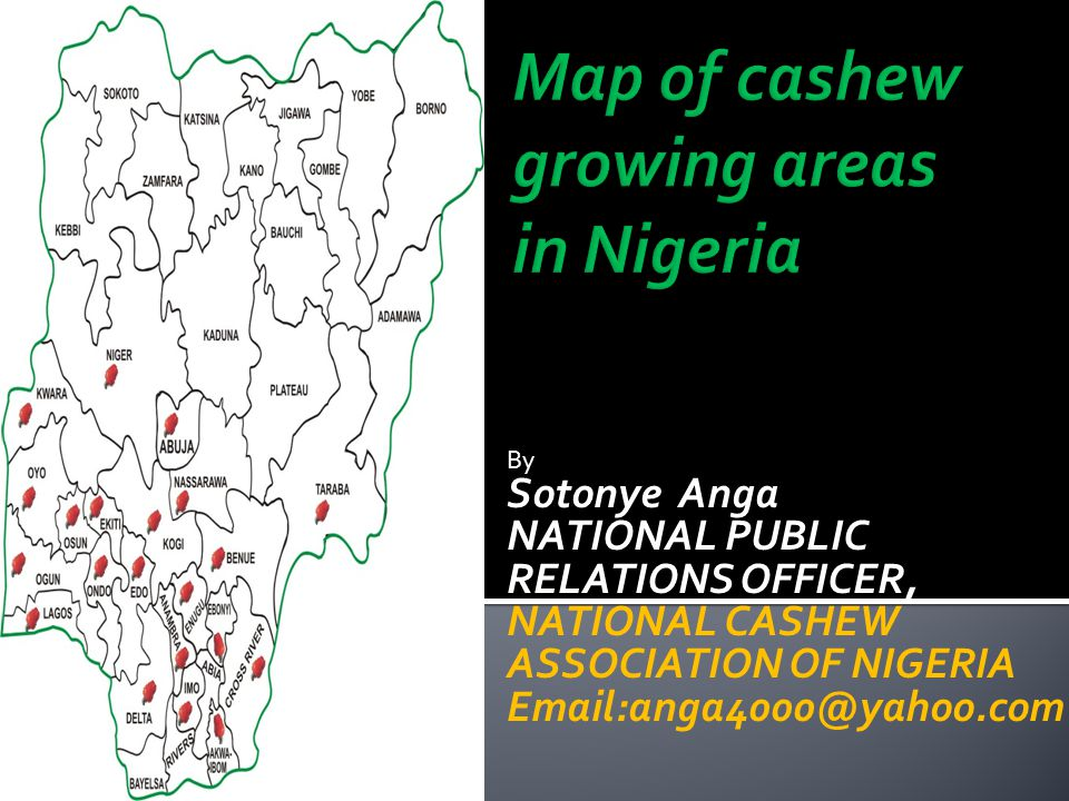 By Sotonye Anga NATIONAL PUBLIC RELATIONS OFFICER, NATIONAL CASHEW ASSOCIATION OF NIGERIA Email:anga4000@yahoo.com