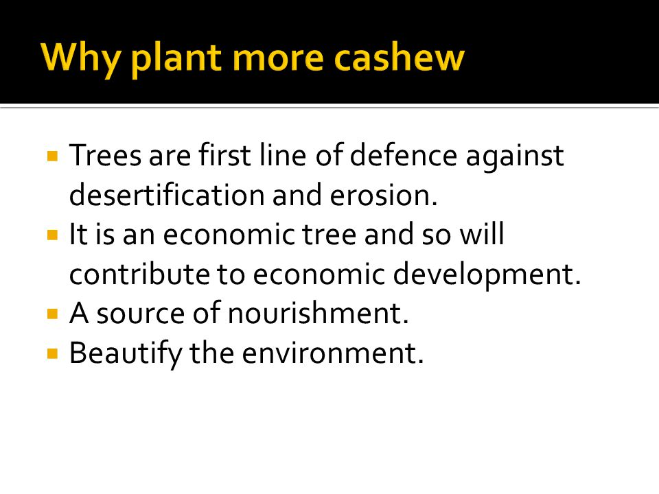  Trees are first line of defence against desertification and erosion.