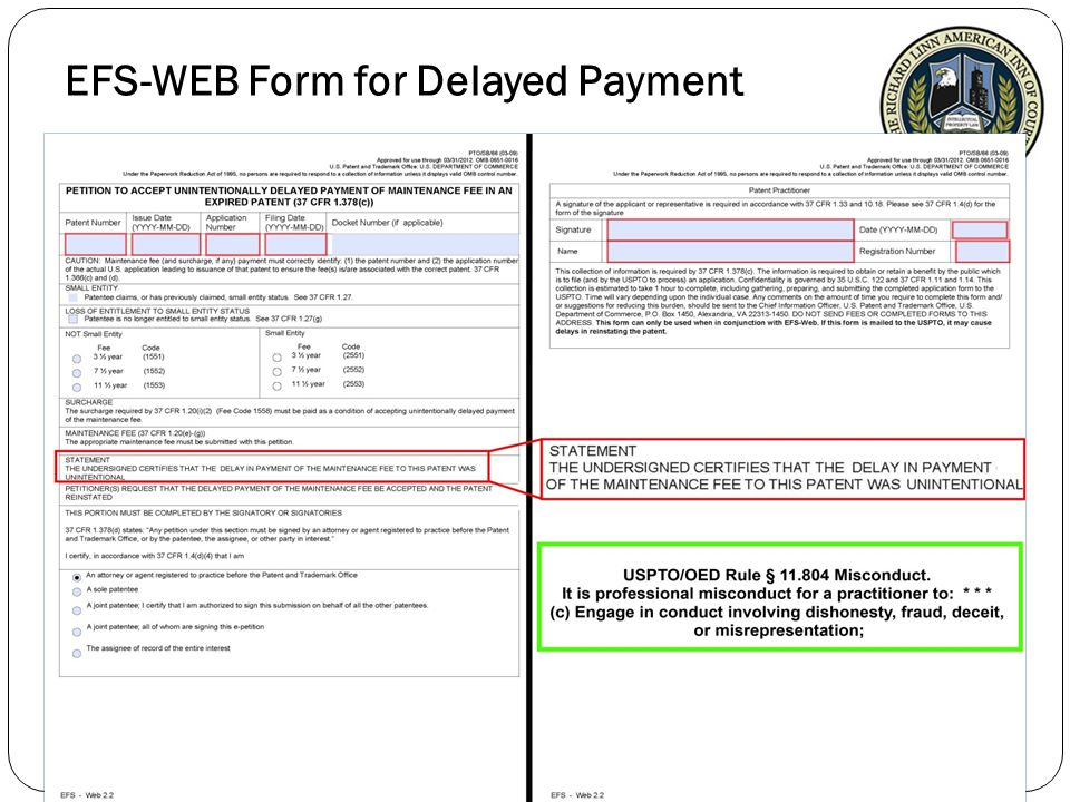 EFS-WEB Form for Delayed Payment