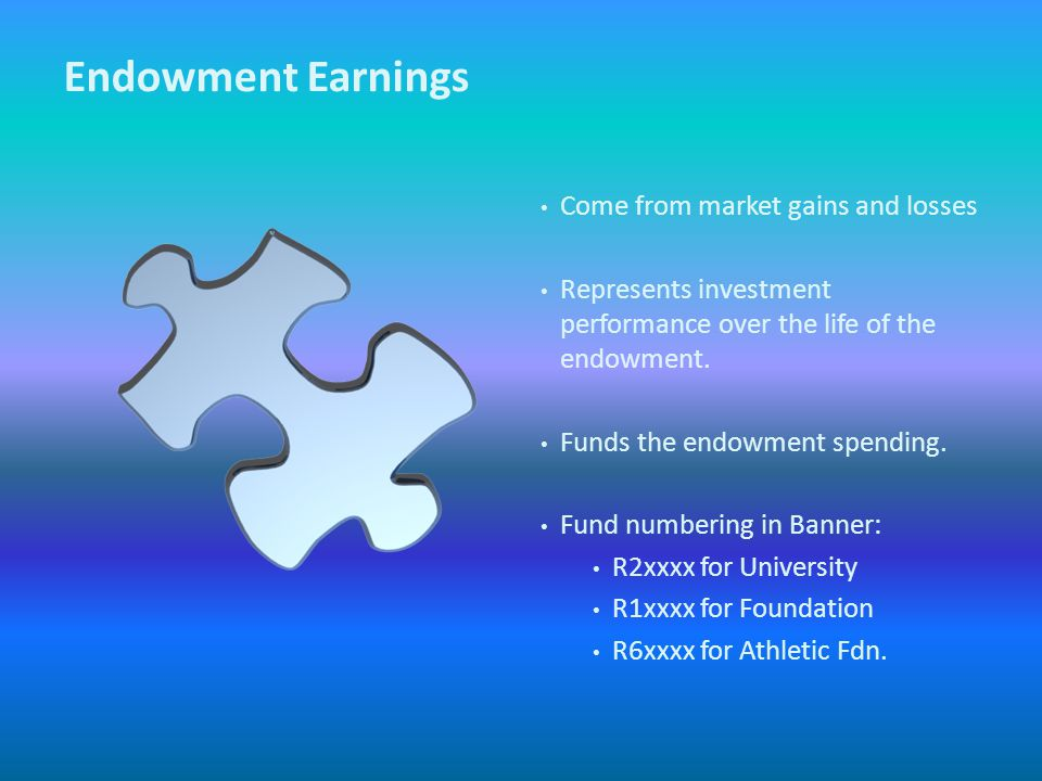 Endowment Earnings Come from market gains and losses Represents investment performance over the life of the endowment.