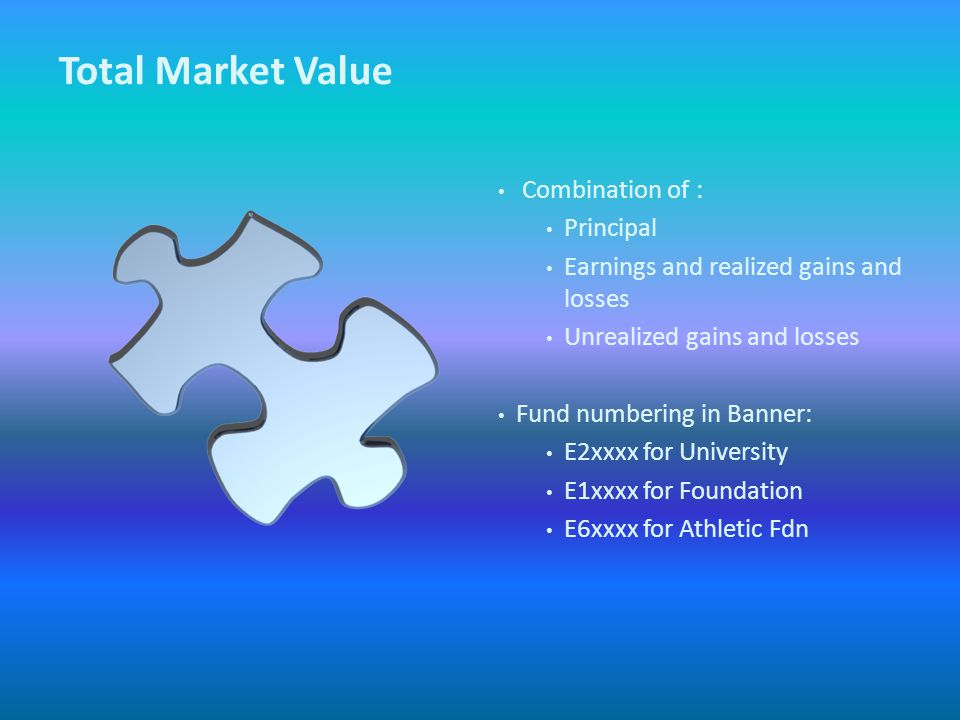 Total Market Value Combination of : Principal Earnings and realized gains and losses Unrealized gains and losses Fund numbering in Banner: E2xxxx for University E1xxxx for Foundation E6xxxx for Athletic Fdn