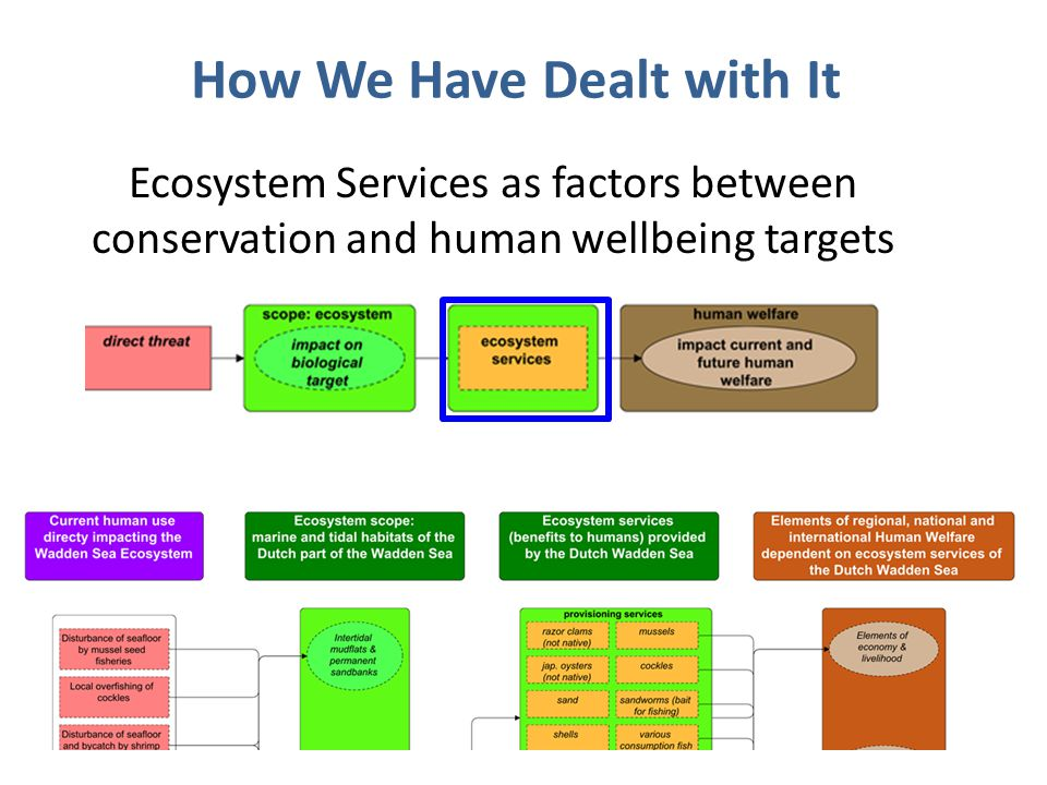 Ecosystem Services as factors between conservation and human wellbeing targets How We Have Dealt with It