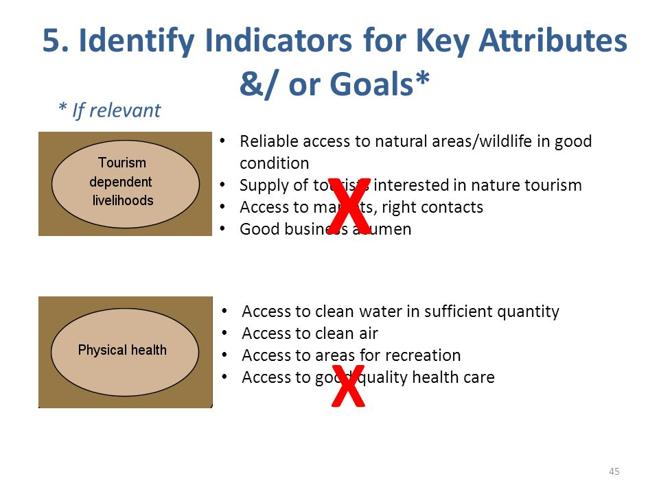 5. Identify Indicators for Key Attributes &/ or Goals* 45 * If relevant Reliable access to natural areas/wildlife in good condition Supply of tourists