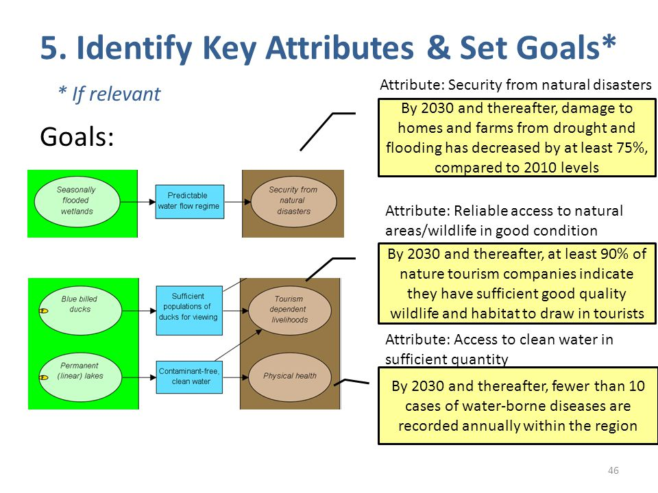 5. Identify Key Attributes & Set Goals* 46 * If relevant Goals: Attribute: Security from natural disasters Attribute: Reliable access to natural areas