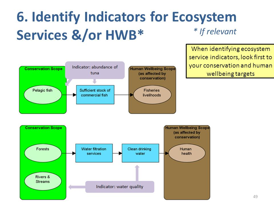 6. Identify Indicators for Ecosystem Services &/or HWB* 49 When identifying ecosystem service indicators, look first to your conservation and human we