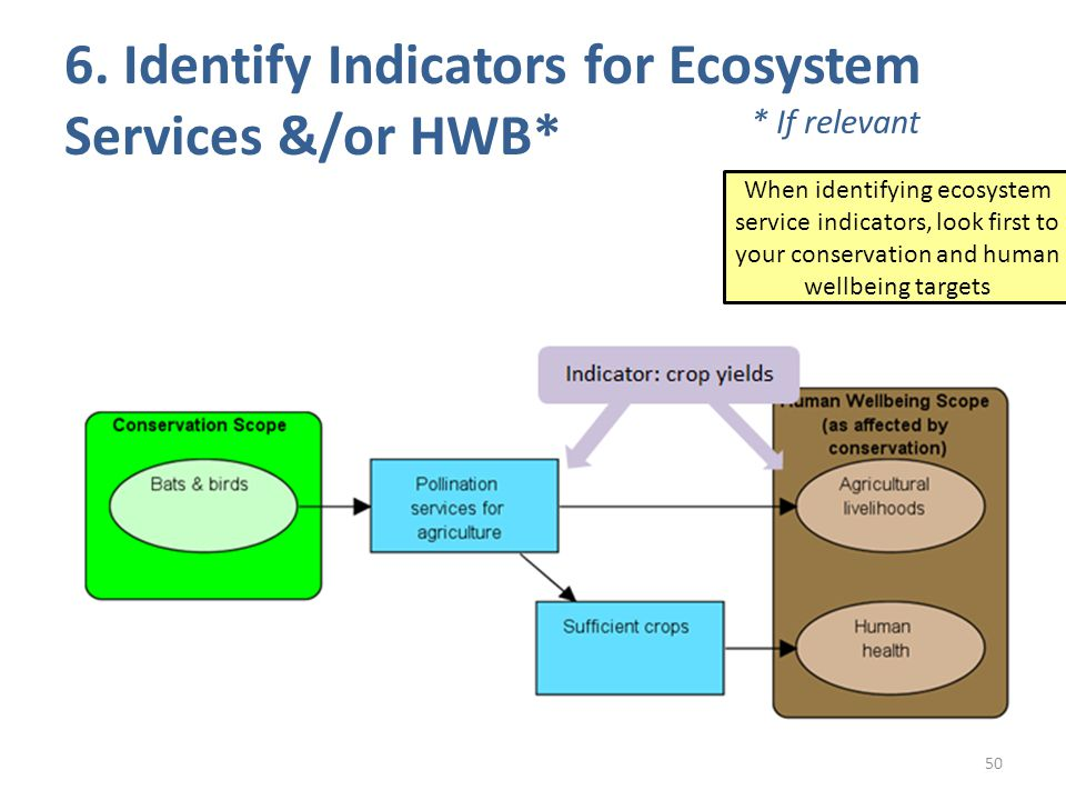 50 When identifying ecosystem service indicators, look first to your conservation and human wellbeing targets 6.