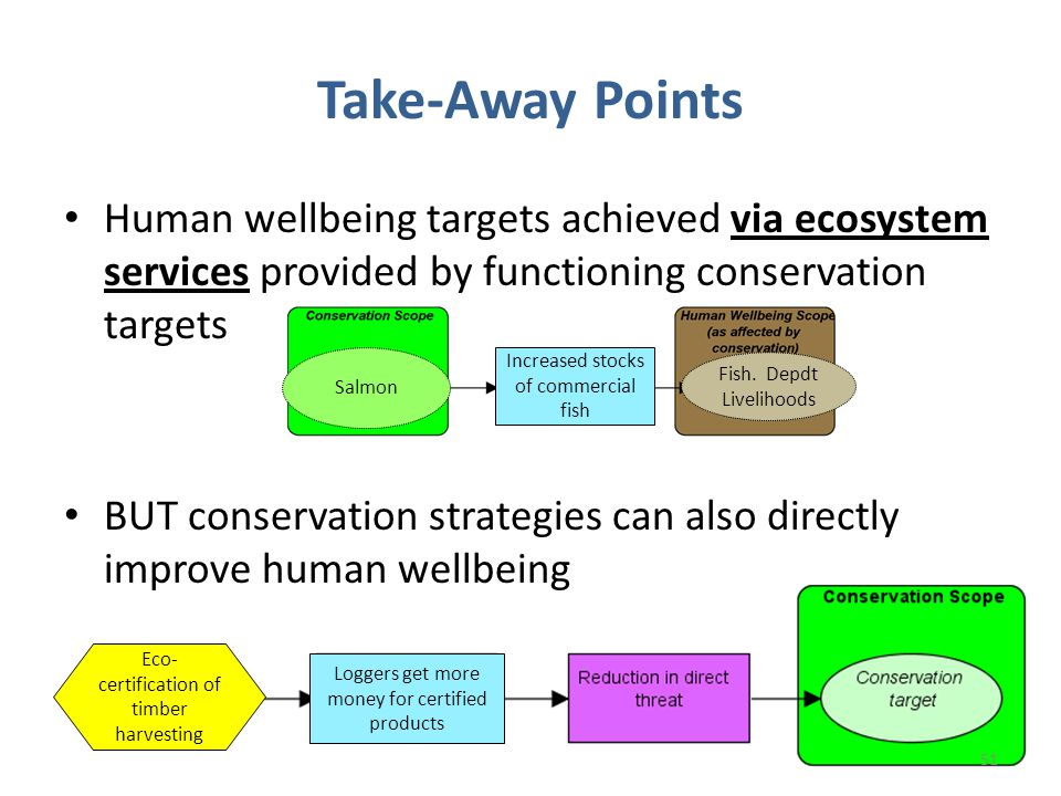 Take-Away Points 51 Human wellbeing targets achieved via ecosystem services provided by functioning conservation targets BUT conservation strategies can also directly improve human wellbeing Loggers get more money for certified products Eco- certification of timber harvesting Increased stocks of commercial fish Fish.