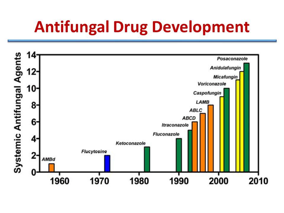 Antifungal Drug Development