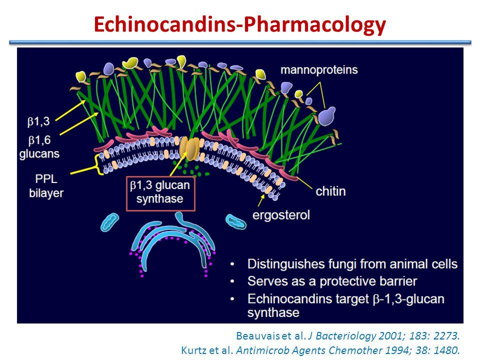 Echinocandins-Pharmacology Beauvais et al. J Bacteriology 2001; 183: 2273.