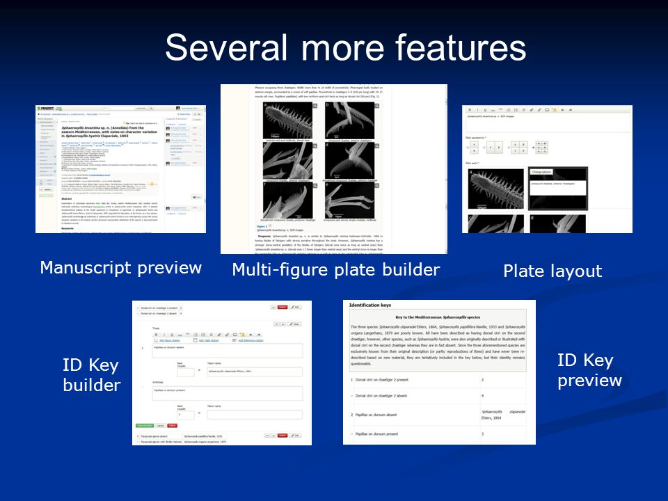 Several more features ID Key preview Multi-figure plate builder Plate layout ID Key builder Manuscript preview