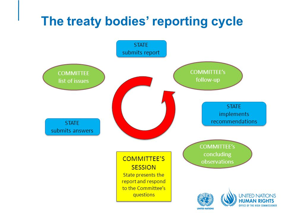 The treaty bodies' reporting cycle STATE submits report STATE submits report COMMITTEE list of issues STATE submits answers STATE submits answers COMM