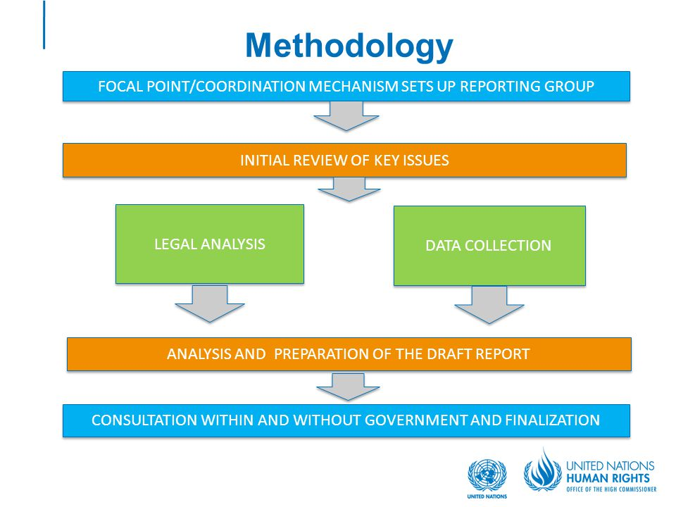 Methodology INITIAL REVIEW OF KEY ISSUES FOCAL POINT/COORDINATION MECHANISM SETS UP REPORTING GROUP LEGAL ANALYSIS DATA COLLECTION ANALYSIS AND PREPAR