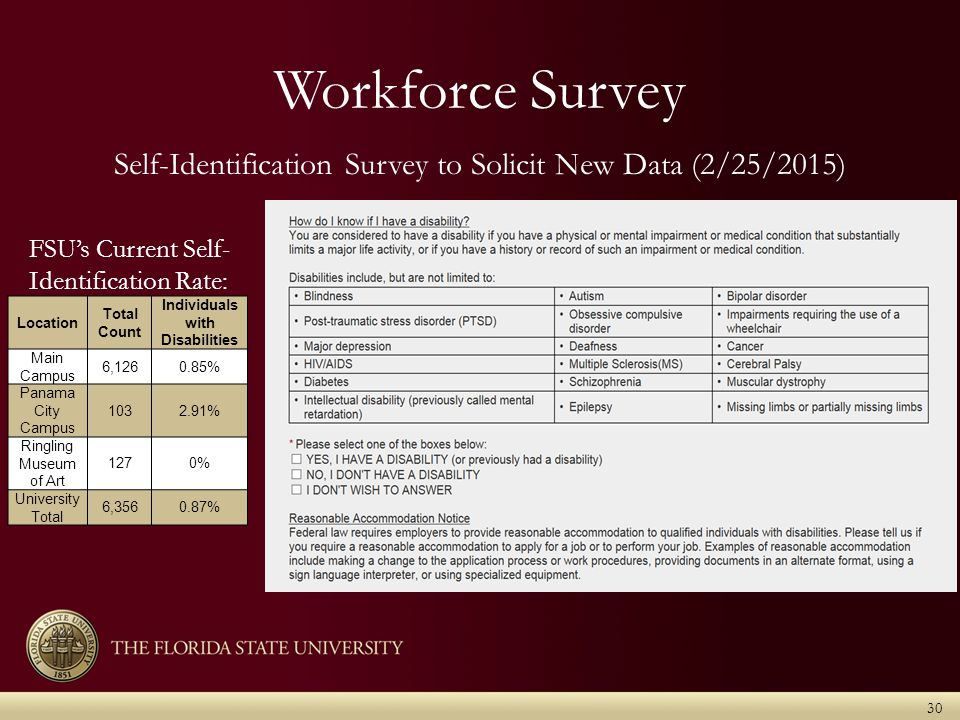 Workforce Survey 30 Location Total Count Individuals with Disabilities Main Campus 6,1260.85% Panama City Campus 1032.91% Ringling Museum of Art 1270% University Total 6,3560.87% FSU's Current Self- Identification Rate: Self-Identification Survey to Solicit New Data (2/25/2015)